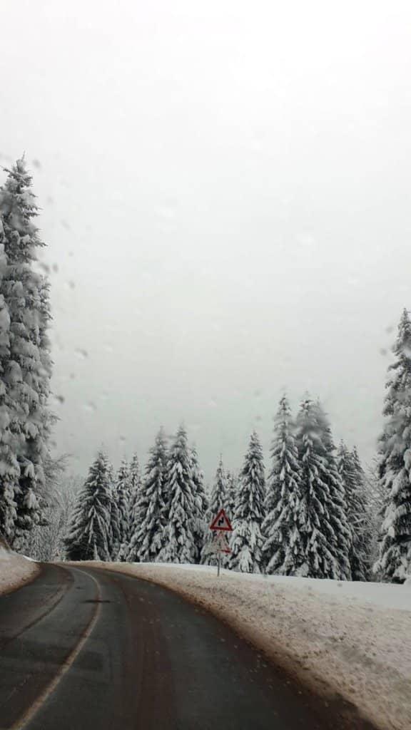 Пао је снег